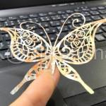 butterfly01c