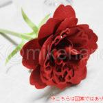 carnation05a